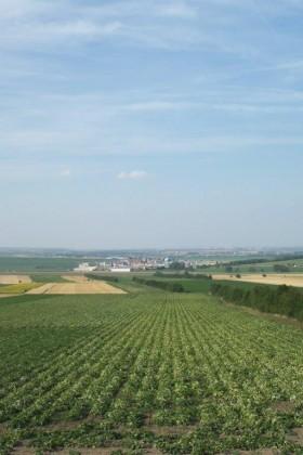 Aussicht_Oesterreich