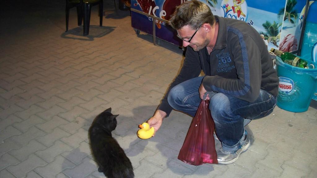 Katze-trifft-Ente-in-Sofia